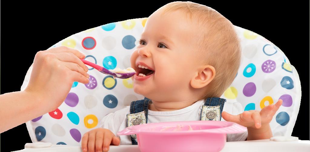 Sterilisation baby food heat exchanger